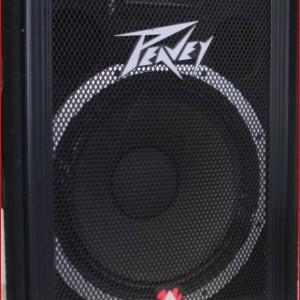 Large Peavey Speaker