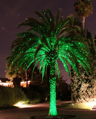 Sprite Light available in Green $79.00